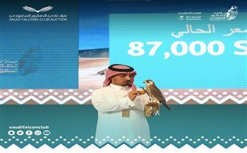 في-مزاد-بيع--صقور-بأكثر-من--ألف-دولار-بنادي-سعودي-|صور