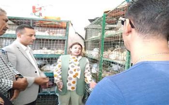 أخبار-البحر-الأحمر-مديرة-عام-إدارة-المجالس-الزراعية-تتفقد-منافذ-مديرية-الزراعة-بالغردقة-|صور