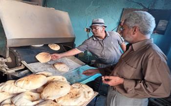 ضبط--مخالفة-تموينية-فى-حملة-تفتيشية-على-أسواق-مرسى-مطروح-والضبعة-|-صور-