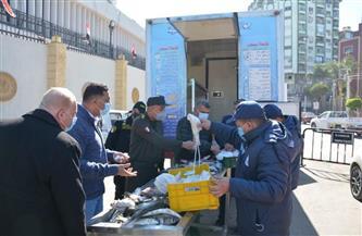 تعرف على منافذ بيع الأسماك والسلع الغذائية بالتعاون مع جهاز الخدمة الوطنية بالمنصورة