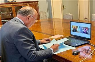 7 محاور خلال مباحثات هاتفية لوزير خارجية مصر والبرازيل