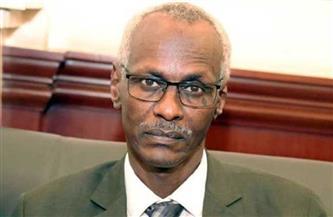 """وزير الري السوداني يدعو لتوسيع وساطة سد النهضة لتشمل الأمم المتحدة.. ويؤكد: نصف سكان السودان """"مهددون"""""""