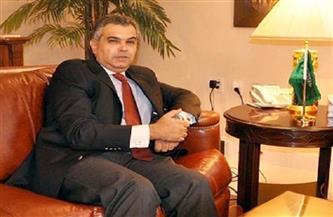 سفارة مصر بواشنطن تعقد جلسة افتراضية مع مساعدي الكونجرس حول سد النهضة