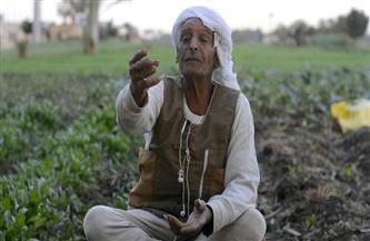 أخيرًا.. إسقاط ديون الفلاحين .. توجيهات رئاسية بحل أزمة المتعثرين.. و«المركزي» يساند «الزراعي» بـ20 مليار جنيه