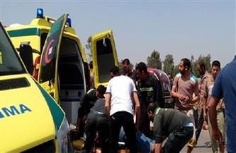 إصابة ٢١ شخصا إثر حادث انقلاب حافلة سياحية بالقرب من حمام فرعون