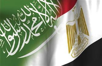 مصر تؤكد دعمها المستمر لجميع التدابير التي تتخذها السعودية لصون أمنها