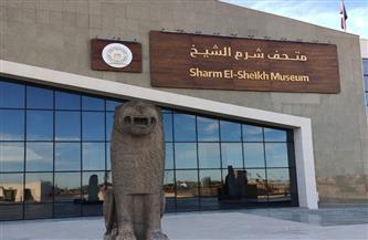 الآثار تنفي تأثر متحف شرم الشيخ بمياه السيول وإتلاف وكسر بعض مقتنياته | صور