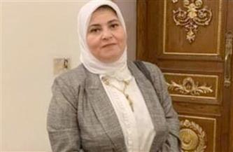 نائبة تتقدم بطلب إحاطة حول المطالبات المالية لوزارة الري لأهالي زفتى