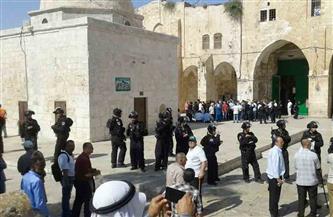 """عشرات المستوطنين يقتحمون """"الأقصى"""" تحت حراسة شرطة الاحتلال"""