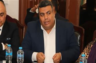 """رئيس اللجنة النوعية لشباب الوفد: قرارات """"أبو شقة"""" الأخيرة أوقفت سير الحزب إلى مصير مجهول"""