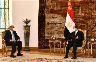الرئيس السيسي يستقبل رئيس وزراء الأردن ويناقشان التعاون في ملف الطاقة ومكافحة الإرهاب