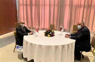 وزيرا خارجية مصر والبحرين يناقشان التدخلات التي تقوّض الأمن والاستقرار الإقليمي