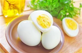 هل يؤثر حجم ولون صفار وقشرة بيض الدجاج على نوعيته؟