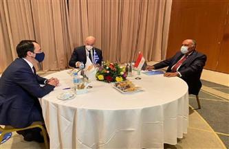 انعقاد آلية التعاون الثلاثي في أثينا بحضور وزير الخارجية | صور