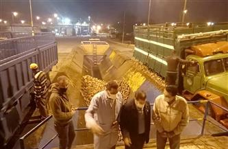 افتتاح موسم تشغيل واستلام البنجر من المزارعين اليوم بالدلتا للسكر