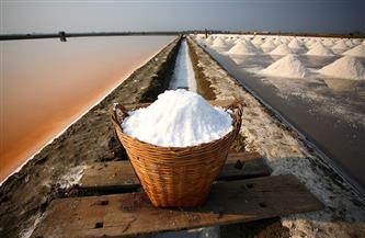 اكتشاف أطلال ورشة لصناعة الملح عمرها ألف عام شمالي الصين