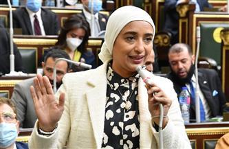 أميرة أبو شقة: المبادرة المصرية لإعمار غزة تعكس موقف مصر الثابت والراسخ نحو مساندة الشعب الفلسطيني