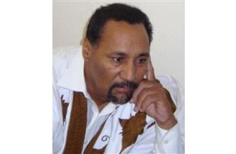 مفكر موريتاني يشيد بالدور المصري في إحلال السلام بليبيا