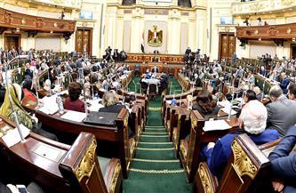 برلمانية تطالب بتقنين الرسوم والأسعار في قانون الموارد المائية والري