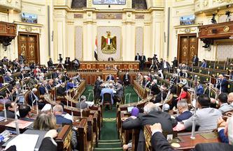 النواب يحظر الجمع بين عضوية الشيوخ والنواب أو الحكومة أو المجالس المحلية أو الهيئات المستقلة والأجهزة الرقابية