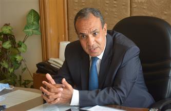 """مساعد وزير الخارجية لـ""""بوابة الأهرام"""": مصر أوشكت على توقيع اتفاق للربط الكهربائي مع قبرص واليونان"""