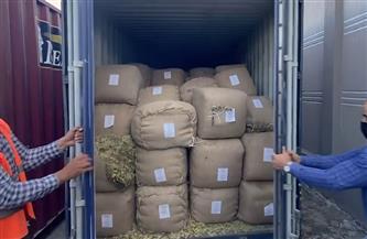 أمن المنافذ تضبط 5 قضايا لتهريب البضائع خلال 48 ساعة