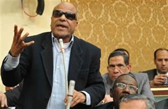 برلمانيون ينعون البدري فرغلي خلال الجلسة العامة لمجلس النواب