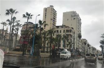 أمطارغزيرة وصقيع يضربان الإسكندرية والمحافظة ترفع الطوارئ| صور