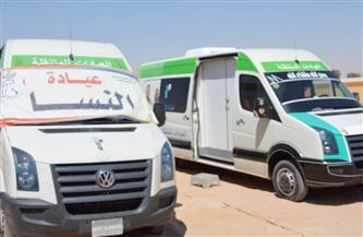 «صحة جنوب سيناء»: قافلة طبية مجانية في وادي الجوفة بأبورديس.. الثلاثاء