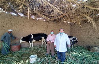 مديرية الطب البيطري بالأقصر تتابع التحصين ضد الحمى القلاعية والوادي المتصدع | صور