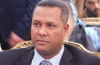 نائب بـ «الشيوخ»: مشروعات الرئيس السيسي الصحية أحدثت طفرة كبيرة