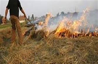 بسبب الطقس.. تحذيرات من إشعال النيران فى مخلفات القصب بقنا