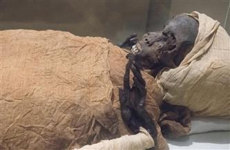 الأشعة المقطعية تكشف ملابسات وفاة الملك سقنن رع تاعا الثاني | صور