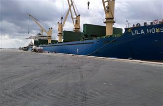 تداول 25 سفينة حاويات وبضائع بمواني بورسعيد