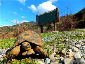 """""""محمية وادي دجلة» تحقق أعلى معدل زيارة شهرية منذ إعلانها"""