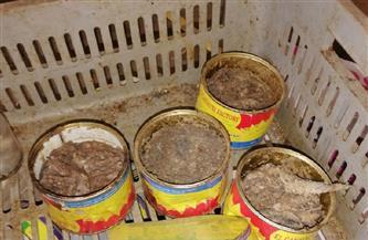 ضبط 11 طن ملح وجبن وأسماك مملحة غير صالحة في حملة بميت غمر   صور