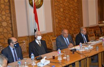 وزير الخارجية يشارك في جلسة لوسائل الإعلام تحضيرًا لمنتدى أسوان للسلام | صور