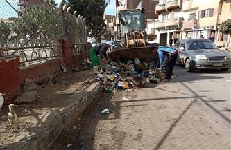 رفع 183 طن قمامة من قرى مركز شبين الكوم بالمنوفية | صور