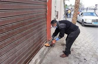 غلق 878 منشأة مخالفة للمواعيد وتحرير 453 محضرا بالمحلة الكبرى