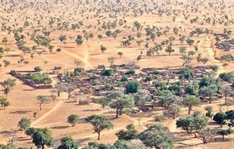 غد أفضل.. صحراء غرب إفريقيا واحة خضراء بفضل الذكاء الاصطناعي