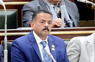 برلماني: توصيل الصرف الصحي والغاز للقرى المصرية كان حلمًا وتحقق على يد الرئيس السيسي