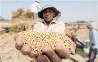 بورصة دبي للذهب والسلع تسجل نموا في عقود كوانتو الروبية الهندية في أبريل