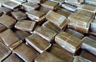 ضبط 200 طربة حشيش بحوزة عنصرين إجراميين بالبحيرة بقيمة 1.4 مليون جنيه