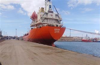 تداول 30 سفينة وشحن 6100 طن صودا كاوية وتفريغ 3200 طن حديد بميناء غرب بورسعيد