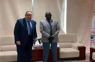 سفير مصر بالخرطوم يناقش مع وزير الطاقة تطورات مشروع الربط الكهربائي بين مصر والسودان