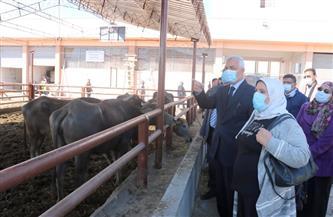 رئيس جامعة المنوفية يتفقد الوحدات الإنتاجية والتجديدات بمزرعة الراهب| صور