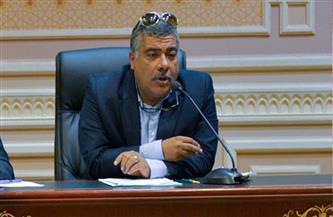 رئيس لجنة الصناعة: روشتة سريعة نستعيد بها ثقة المستثمر المصري في مجلس النواب والدولة المصرية