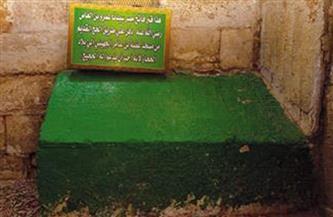 حديث الصور | ضريح «الفاتح» عاشق مصر