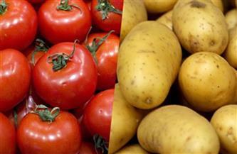 انخفاض الطماطم والبطاطس.. أسعار الفاكهة والخضراوات اليوم الإثنين 22 فبراير 2021