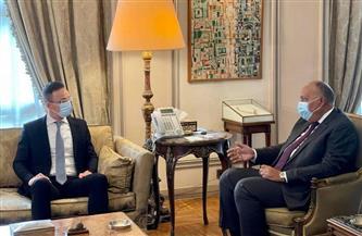 وزير الخارجية يستقبل نظيره المجرى لإجراء مباحثات ثنائية| صور